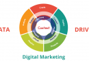 How Data-Driven Digital Marketing Strategies can ensure Maximum ROI for Your Business?